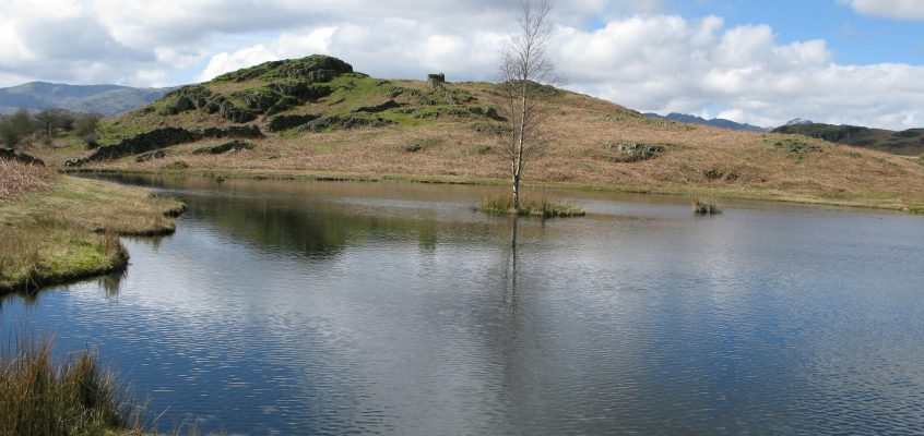 Loughrigg and Lily Tarn from Tarn Foot Junction 9.4.16
