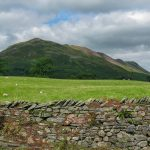 Low Fell from Loweswater