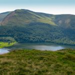 Loweswater Pheasant Carling Knott - Blake Fell
